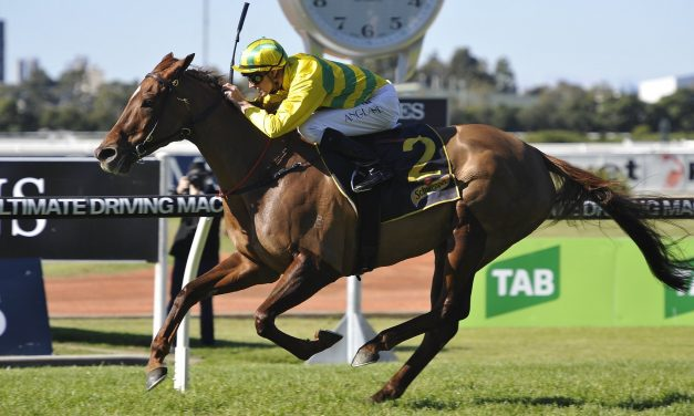 Gollan's mares draw side by side in Tattersall's Mile