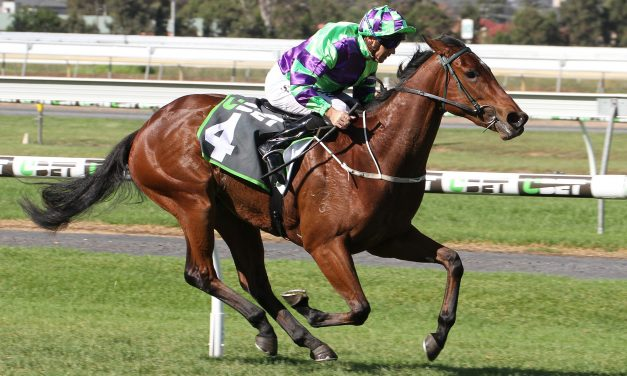 Dunn out to secure Spring rides on Aurie's Star Handicap fancy I Am A Star
