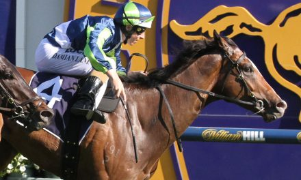Bletchingly Stakes prospect Keen Array to have better Spring