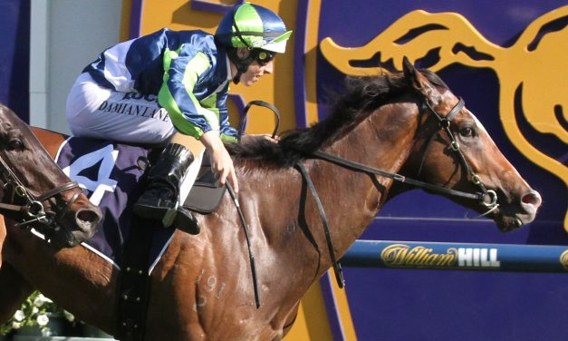 Keen Array over the odds for Carlyon Stakes
