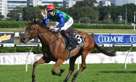 Bonneval a possible Winx rival in 2017 Cox Plate