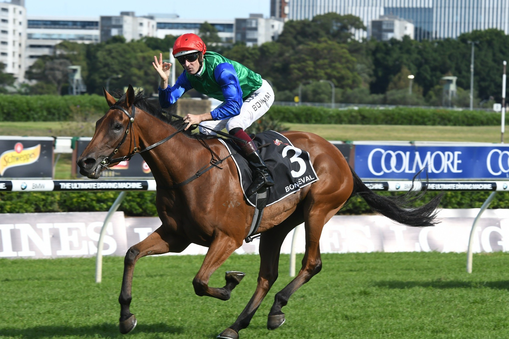 'Vermeer' Primed For Caulfield Cup