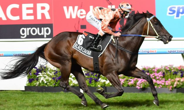 Black Caviar's daughter Oscietra trials at Geelong