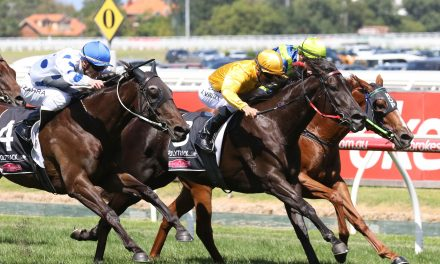 Savanna Armour supported in early betting for Bletchingly Stakes