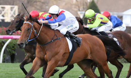 Dwayne Dunn has the Ability to win the Bletchingly Stakes