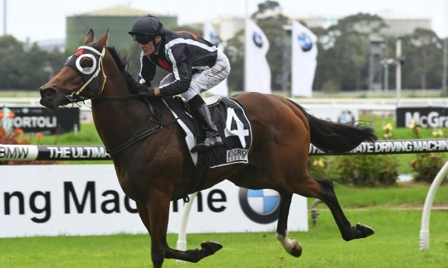 Weather to determine If Jungle Edge takes on Winx after Missile Stakes