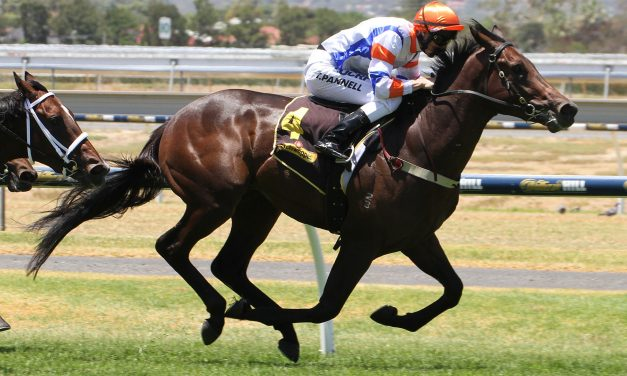 Hey Doc tuned up for Memsie Stakes with Aurie's Star Handicap Win