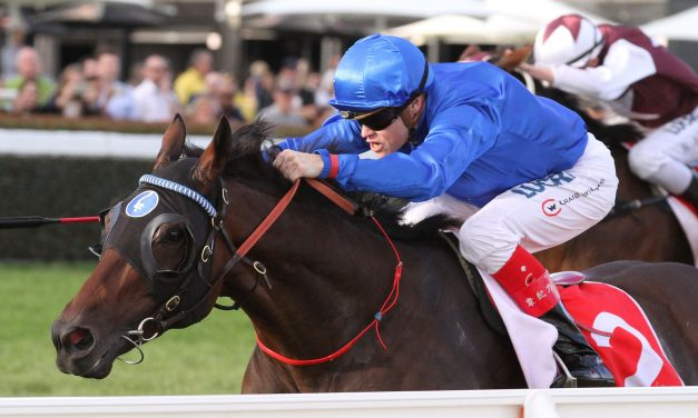 Early 2017 Darwin Cup betting has 3 battling for favouritism