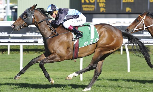 Missile Stakes can rocket Tycoon Tara into the breeding barn