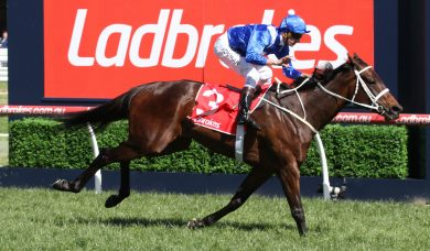 Winx Sparkles In Breakfast With The Best Gallop