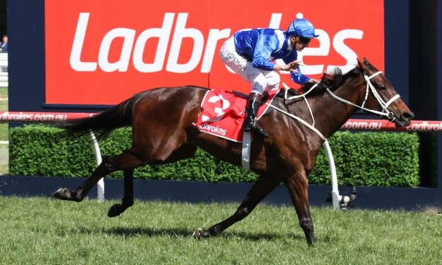 Winx at unbackable odds for 2017 Warwick Stakes