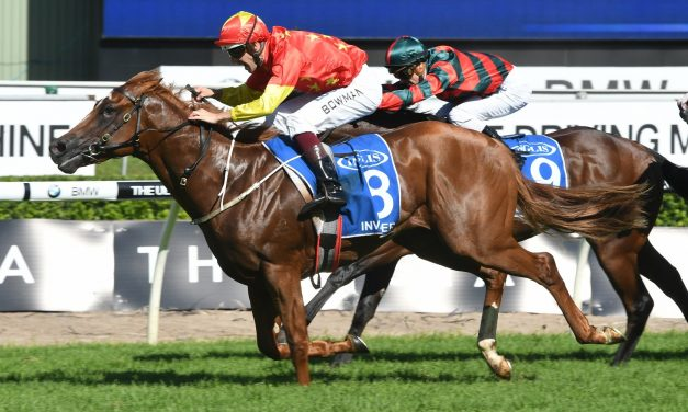 Group 1 Winners Highlight 2017 Ladbrokes Caulfield Guineas Nominations