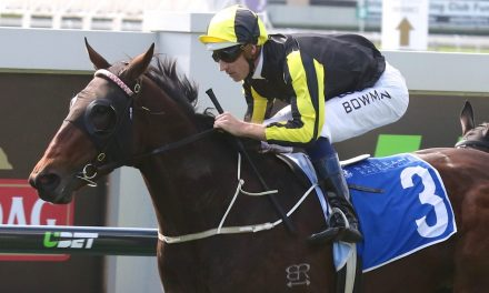 Flippant early favourite for Aurie's Star Handicap