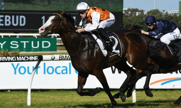 A Golden Rose win could see Menari secure a slot in The Everest