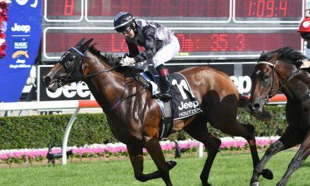 Houtzen to press forward from wide barrier in McEwen Stakes