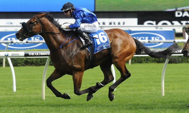 Webster excited to be part of Winx's Cox Plate phenomenon