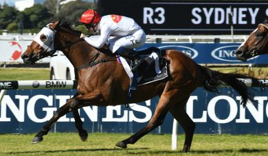 Wyong Cup an Option for Rowley Mile Winner Arbeitsam