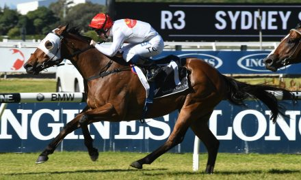 Arbeitsam draws outside barrier in Rowley Mile
