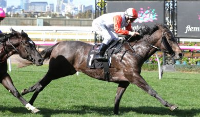 Azazel Primed for McKenzie Stakes