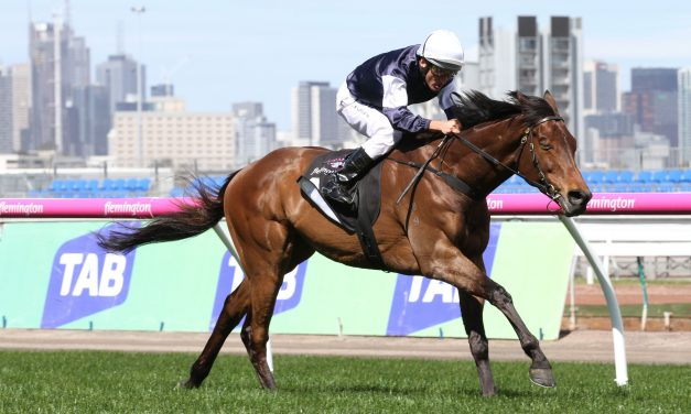 55 In Melbourne Cup First Acceptances