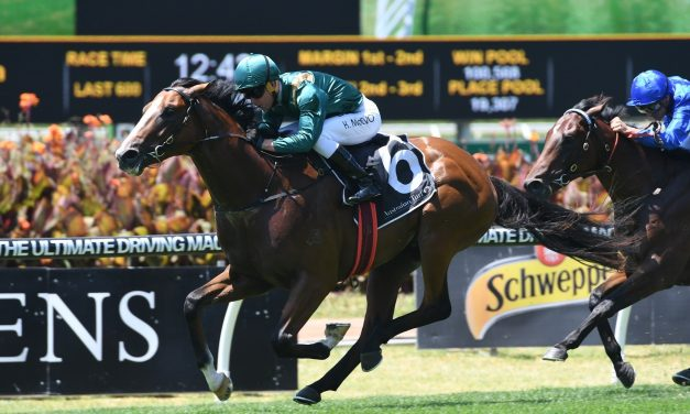 Speed Street odds shorten in San Domenico Stakes