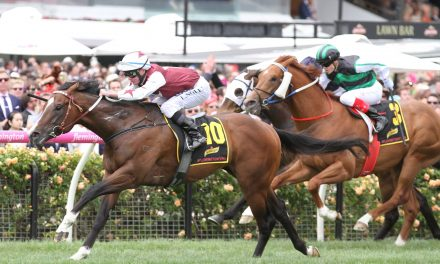 Speedeor at single figure odds for return in Carlyon Stakes