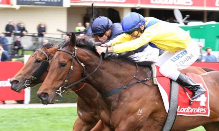Banish Capable in Atlantic Jewel Stakes