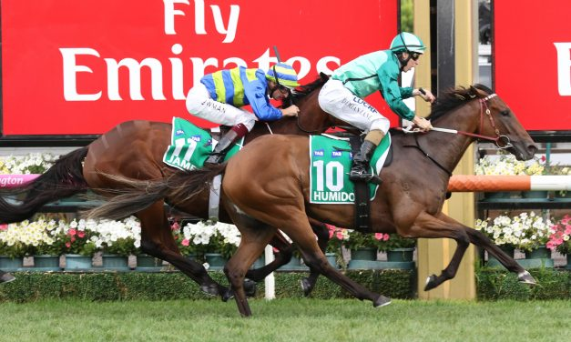 Blinkers and Blake Shinn on Humidor against Winx in 2017 Cox Plate