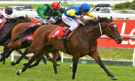 2017 Memsie Stakes Day Preview & Tips