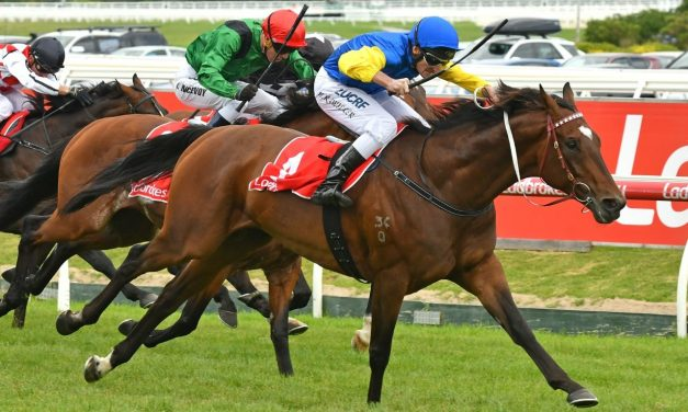 Black Heart Bart fit and well for 2017 Kingston Town Classic