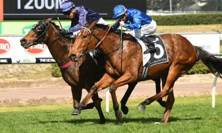 Inside barrier gives Alizee chance to go 1 better in Furious Stakes