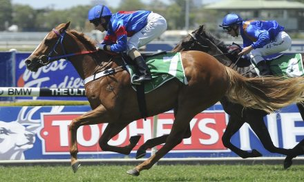 Single Gaze specked at long odds in 2017 Memsie Stakes