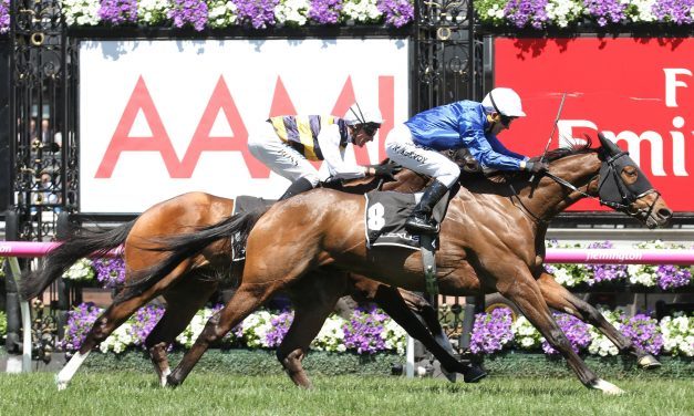 Tom Melbourne tested for G1 assignment in Tramway Stakes
