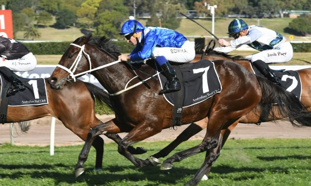 Winx is ready to live up to expectation in Turnbull Stakes