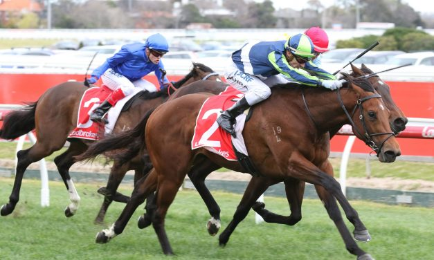 Golden Rose For McNeil Stakes Winner Merchant Navy