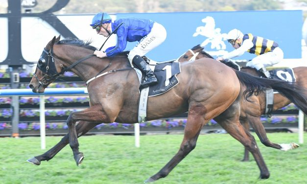 Epsom Handicap The Goal For Tramway Stakes Winner Happy Clapper
