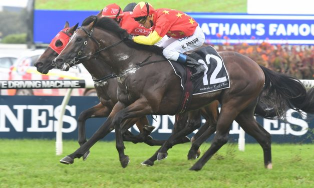 Russian Revolution draws midfield in McEwen Stakes field