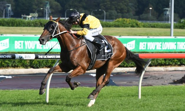 Barrier 3 for The Mission in Stan Fox Stakes Field