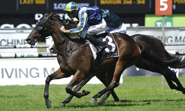 Stable confident He's Our Rokkii hard to beat in Dato' Tan Chin Nam Stakes