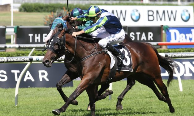 2017 Dato' Tan Chin Nam Stakes Day Preview & Tips