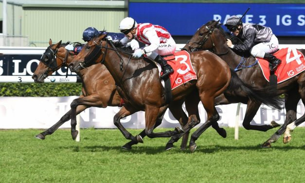 Shoals On Thousand Guineas Path After Atlantic Jewel Stakes Win