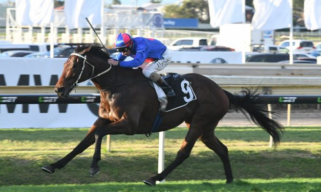 Marsh Thrilled With Chocante Ahead of Kingston Town Stakes