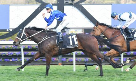 Winx has the right body language leading into the Turnbull Stakes