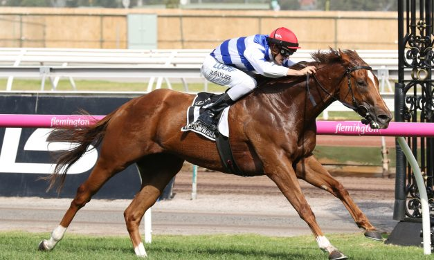 Lindsay Park has huge numbers in 2017 Manikato Stakes nominations