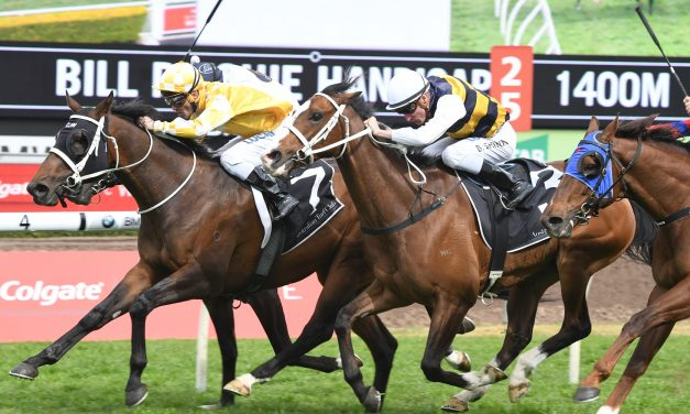 Epsom Handicap Next for Bill Ritchie Handicap Winner Comin' Through