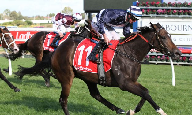 Naturalism Stakes win will give Abbey Marie free ticket into Caulfield Cup