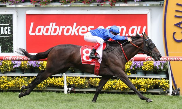 Caulfield Cup hopefuls line up in Naturalism Stakes