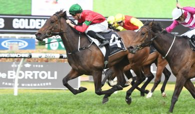 Daysee Doom To Coolmore Classic After Millie Fox Stakes Win