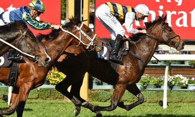 Crown Oaks Still the Target for Aloisia