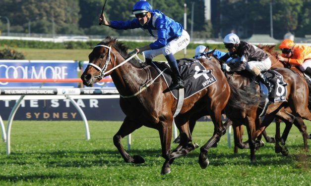 Winx Ready For 2017 Turnbull Stakes